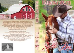 Stable Boy Cover