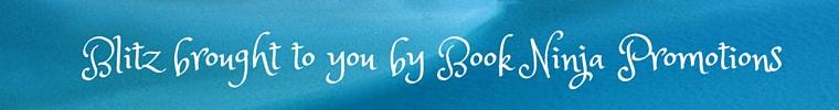 Book ninja COT blue